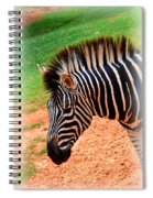 Hartman Zebra Spiral Notebook