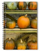 Harvest Display Spiral Notebook