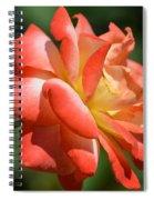Harvest Rose Spiral Notebook