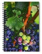 Harvest Time 1 Spiral Notebook