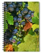 Harvest Time 2 Spiral Notebook