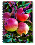 Harvesting Apples Spiral Notebook
