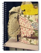Hatbox Of Lace Spiral Notebook