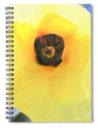 Hau Blossom Spiral Notebook