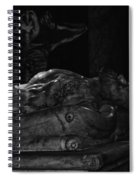 Haunted Crypt Spiral Notebook