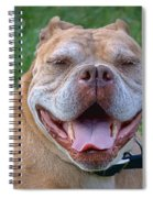 Havana's Grin Spiral Notebook