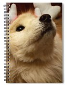 Have I Been A Good Doggie? Spiral Notebook