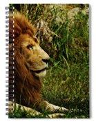 Having A Break Spiral Notebook