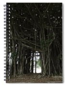 Hawaiian Banyan Tree - Hilo City Spiral Notebook