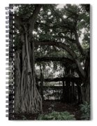 Hawaiian Banyan Trees Spiral Notebook