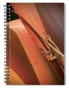 Hawaiian Lizard Spiral Notebook