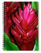 Hawaiian Red Torch Ginger Spiral Notebook