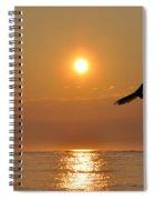 Hawk At Sunrise Spiral Notebook