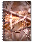 Hawk In The Woods Spiral Notebook