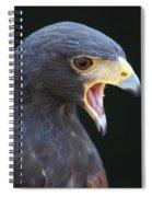 Hawk Portrait Spiral Notebook