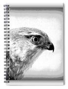 Hawk - Raptor Spiral Notebook