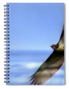Hawk - Screams Of The Ocean Spiral Notebook