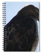 Hawkish Spiral Notebook