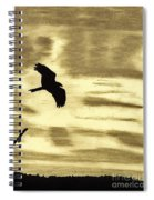 Hawks - At - Sunset Spiral Notebook
