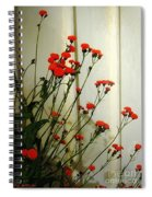Hawkweed In Late Autumn Sun Spiral Notebook