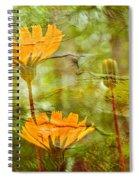 Hawkweed Wildflower Spiral Notebook