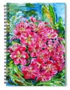 Hawthorn Blossom Spiral Notebook