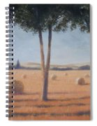 Hay Bales And Pines, Pienza, 2012 Acrylic On Canvas Spiral Notebook