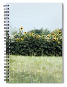 Hay Bales And Sunflowers Spiral Notebook