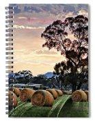 Hay Morning Spiral Notebook