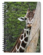 Hay Not Just For Horses Spiral Notebook