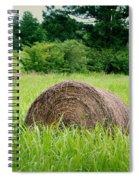 Hayroll Field Spiral Notebook