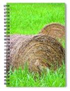 Hayrolls Spiral Notebook