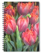 Hazardous Beauty Spiral Notebook