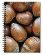 Hazelnoot 3 Spiral Notebook