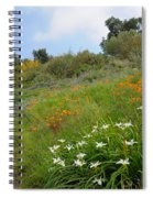 Hazy Morning In The Garden Spiral Notebook