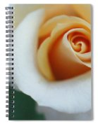 Hazy Rose Spiral Notebook