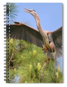 Hb In The Pines Spiral Notebook