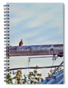 Hdr Bird On A Pipeline II Spiral Notebook