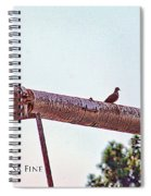 Hdr Dove On A Pipe Spiral Notebook