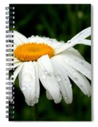 He Loves Me He Loves Me Not Spiral Notebook