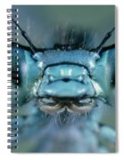 Head And Compound Eyes Of Damselfly Spiral Notebook