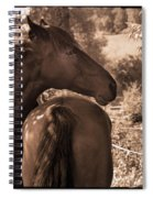 Head And Tail Spiral Notebook