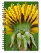 Head Dress Spiral Notebook