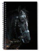 Head Of An Equine Warrior Spiral Notebook
