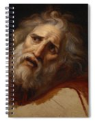 Head Of Laocoon Spiral Notebook