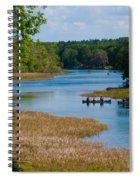 Head Springs Spiral Notebook