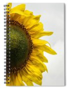 Head Up To The Rains - Sunflower Spiral Notebook