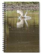 Headless Snowy Egret Of Rum Creek Spiral Notebook