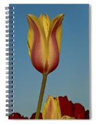 Heads Above The Rest Spiral Notebook