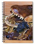 Heads Spiral Notebook